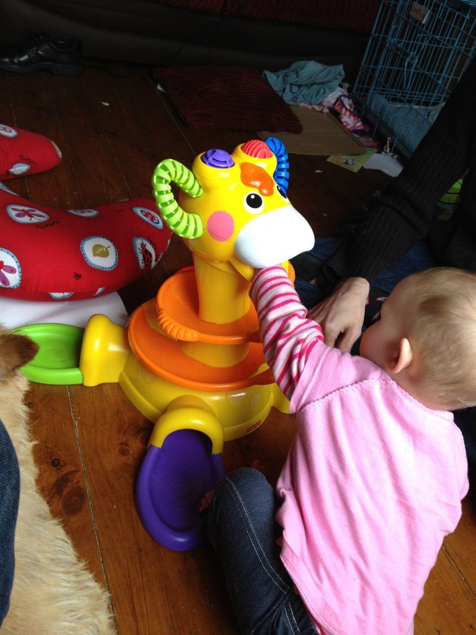Review Fisher Price Go Baby Go Sit To Stand Giraffe