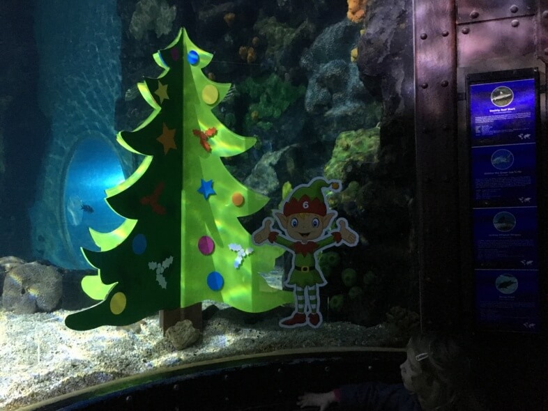 Christmas tree at Sea Life Birmingham