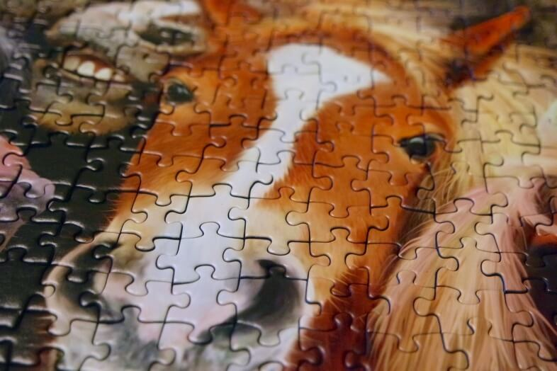 Ravensburger Horsing Around