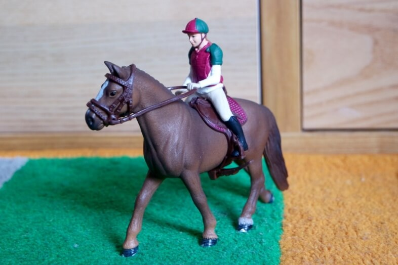 Eventing Rider