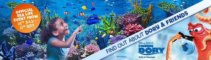 Finding Dory at Sea Life