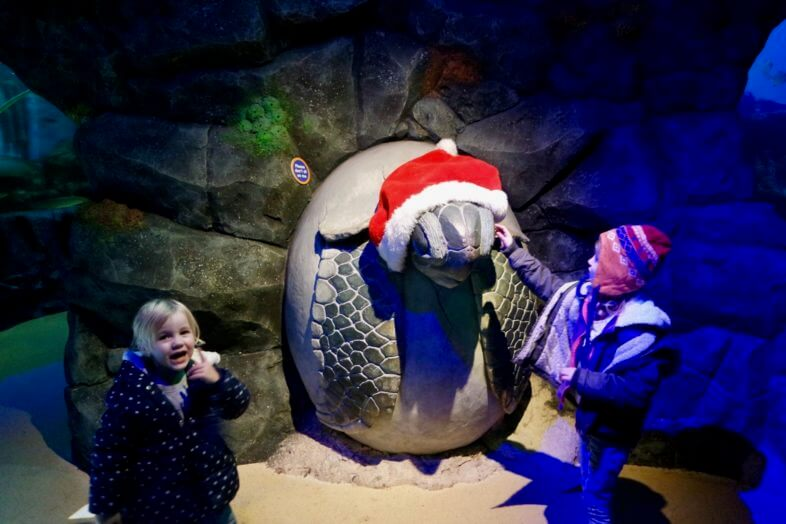 Seeing Santa at the Sea Life Centre