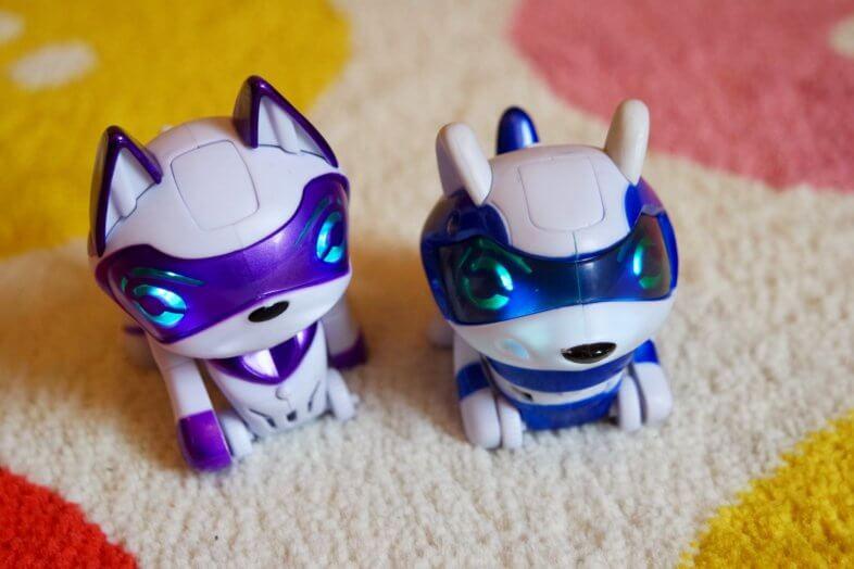 Teksta Micro-Pets Kitty and Raccoon