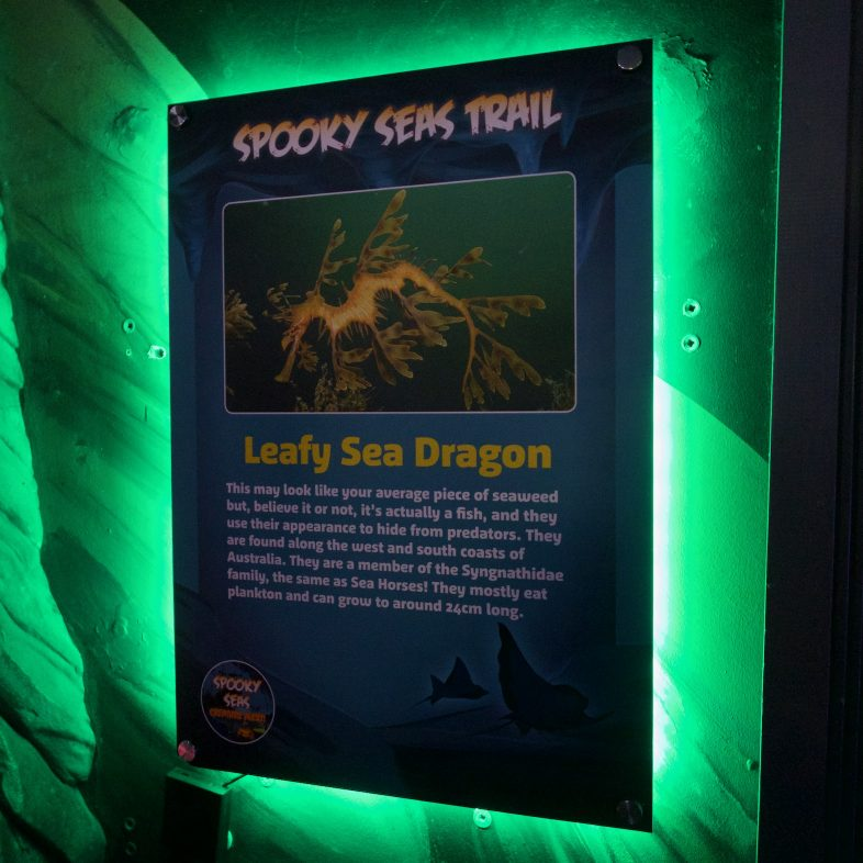 Spooky Seas Trail at Sea Life Birmingham